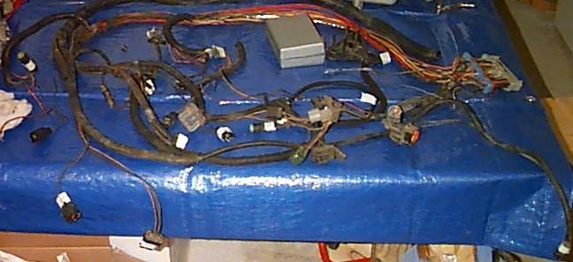2000 F150 Engine Wire Harness : content ford f150 302 v8 pickup truck 2000 2003 ~ A.2002-acura-tl-radio.info Haus und Dekorationen