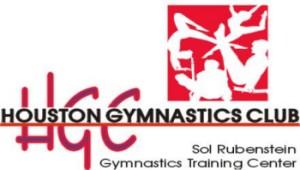 region 3 mens gymnastics texas state meet
